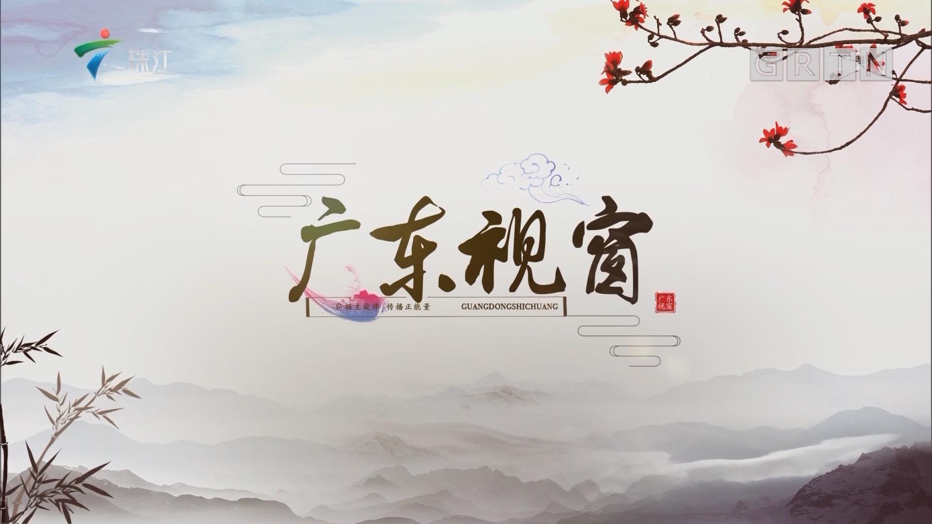 """[HD][2019-07-27]广东视窗:汕尾:坚持""""红色村""""扛旗引路 立标竖杆"""