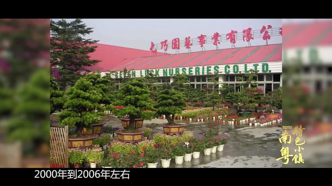 [HD][2019-07-07]南粤特色小镇:陈村·花卉小镇