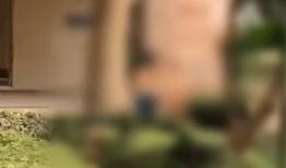 珠海:男童遭父親當眾抽打