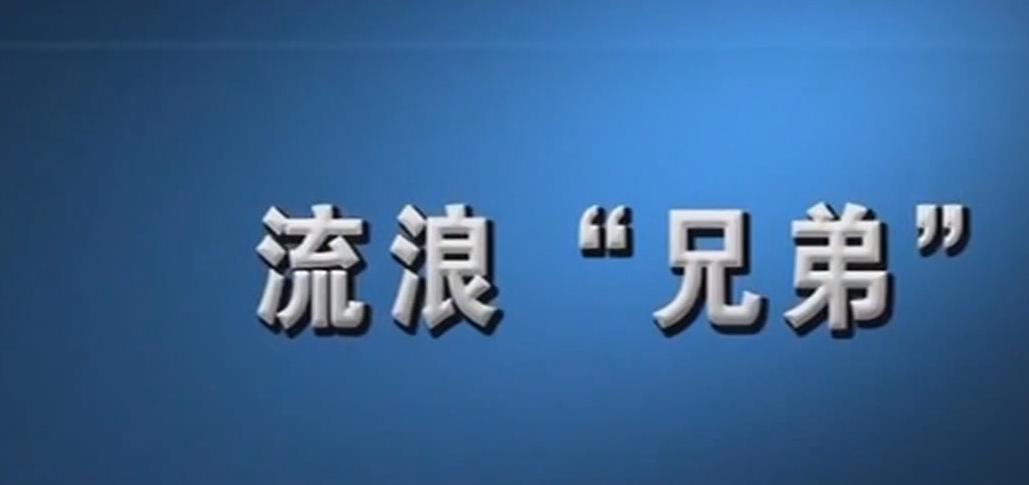 """[HD][2019-08-20]新闻故事:流浪""""兄弟"""""""