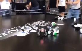"""佛山:电竞高手用""""咏春""""勇夺机器人格斗金牌"""