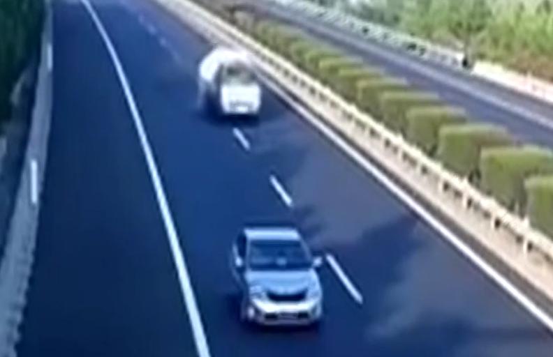 """女司机""""自杀式""""停车 指挥民警几乎崩溃"""