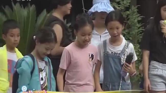 [2019-08-14]南方小記者:貴州天眼研學探索之旅——走進青巖古鎮