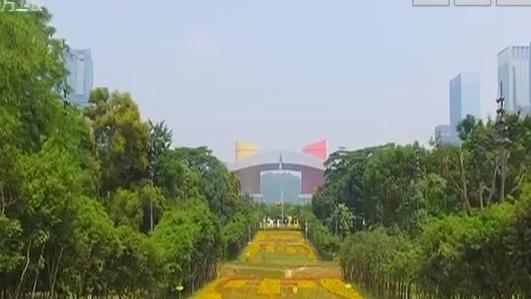 深圳:市民亲手种植花卉景观表白祖国