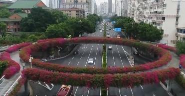 """廣州:""""空中花廊""""四季如春"""