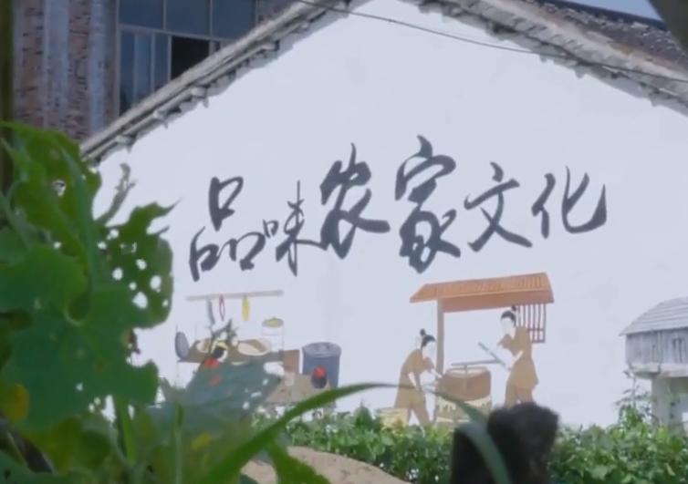 """阳春市:打造美丽乡村 留住""""诗和远方"""""""