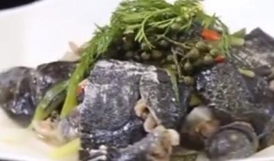 健康厨房:花椒蒸甲鱼
