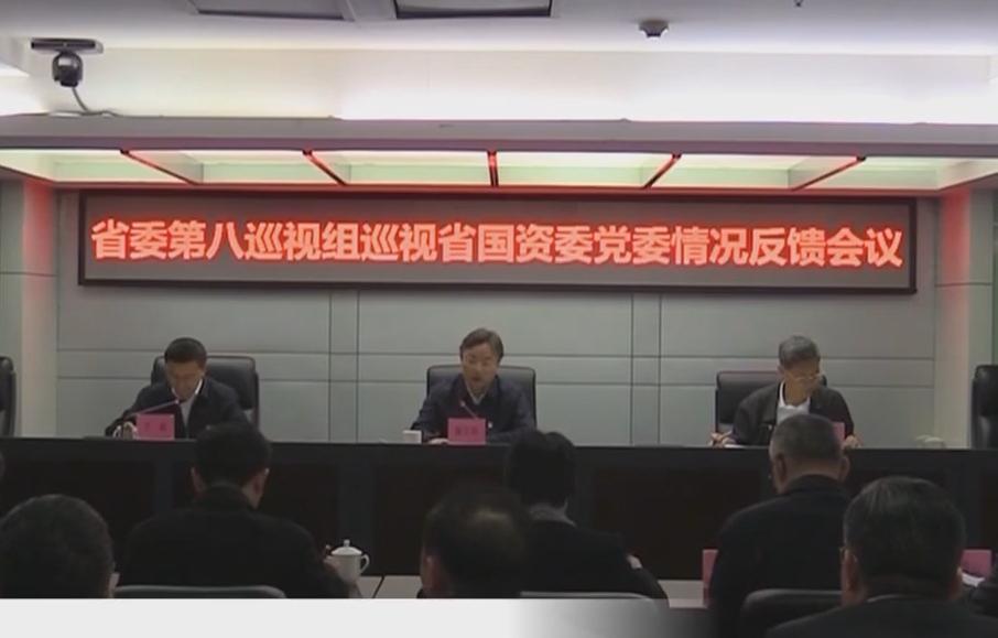 省委巡视组向被巡视党组织反馈十二届省委第五轮巡视情况(三)