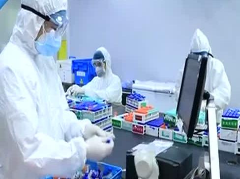 """今日最给力 """"广东研发""""占全国获批检测试剂三成 助力抗击新冠肺炎疫情"""