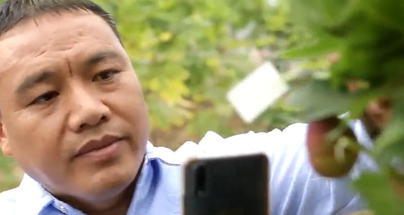 """[HD][2020-04-11]珠江周刊:助推脱贫攻坚 我是""""网红""""新闻官"""