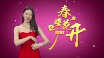 2016新春主持人宣传片