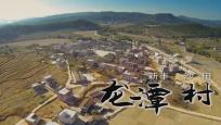 新丰沙田龙潭村—沙糖桔