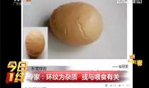 """东莞厚街:家鸡产下""""彗星蛋"""" 蛋壳布奇异花纹"""