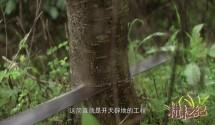 耕耘纪第一季第01集