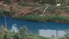 """河涌变""""蓝色多瑙河"""" 环保局立马整治"""
