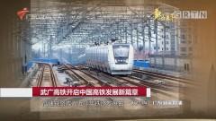 武广高铁开启中国高铁发展新篇章