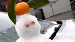 冷冷冷:广东今天终于下雪了!