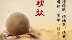 新春走基层:探广东药膳 看乡村变化 化州以橘红为媒 促县域经济大提速