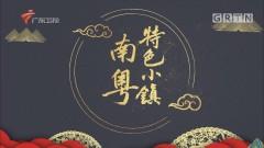[HD][2019-05-16]南粤特色小镇:陶谷小镇——创新南庄