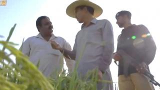 《我的青春在丝路》第1集:我在巴基斯坦种水稻