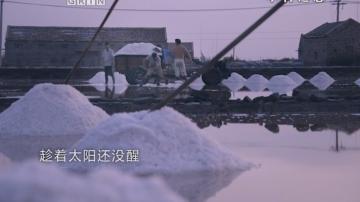 徐闻盐场—海盐的故事