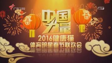 中国力量 2016健康猫体育明星春节联欢会