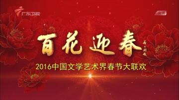 百花迎春 2016中国文学艺术界春节大联欢