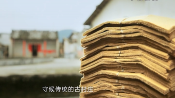 贞山街道白龙村委——古法造纸