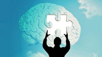 大脑从20岁开始衰老,真的拦不住?