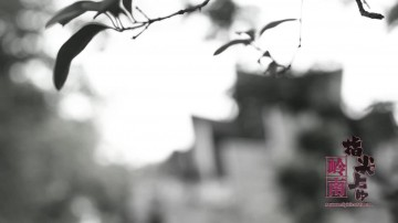 [2017-10-15]指尖上的岭南——砖雕技艺