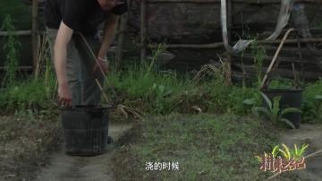 耕耘纪第一季第03集