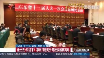 走出去+引进来! 惠州打造对外开放发展新高地