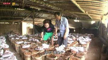 食匀全中国第15集 -振伟、子丰河源之旅