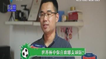 """[2018-06-25]激情世界杯:江忠德见名模组成""""番茄蛋"""" 被足球耽误的娱乐咖"""