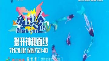 [2018-07-28]爱上美人鱼