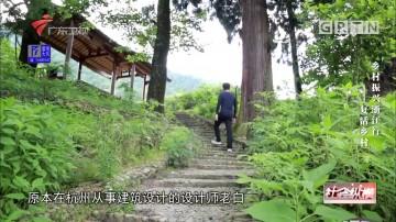 [HD][2018-07-25]社会纵横:乡村振兴浙江行——复活乡村