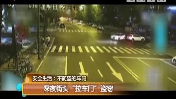 """安全生活:不防盗的车门 深夜街头""""拉车门""""盗窃"""