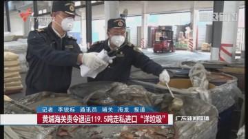 """黄埔海关责令退运119.5吨走私进口""""洋垃圾"""""""