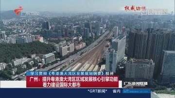 广州:提升粤港澳大湾区区域发展核心引擎功能 着力建设国际大都市