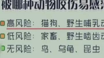 [2019-04-09]乐享新生活:9岁男孩感染狂犬病 疑因伤口被狗舔所致