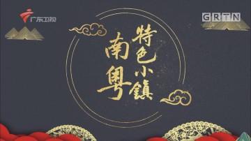 [HD][2019-05-16]南粤特色小镇:?#23637;?#23567;镇——创新南庄