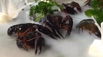 小龙虾集锦