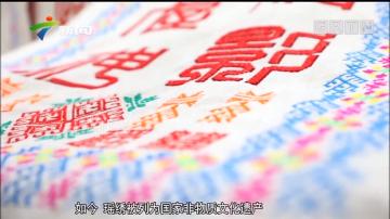 [HD][2019-06-19]善美韶关 岭南名郡:瑶族风情之瑶绣:反面绣 正面看