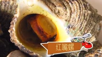 制作白灼海螺