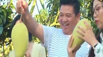 制作芒果炒鸡柳