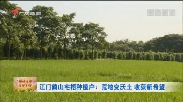江门鹤山宅梧种植户:荒地变沃土 收获新希望