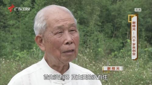 凡人大爱——谢榕光  八十岁来创业