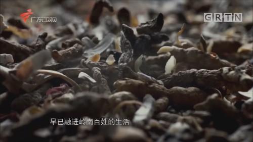 [2018-05-19]悬壶岭南:养生民俗