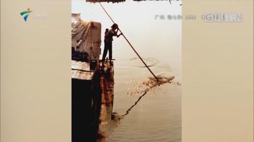 [HD][2018-12-18]珠江纪事:他把时间卖给了老照片