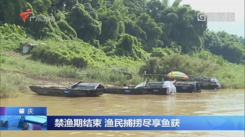 禁渔期结束 渔民捕捞尽享渔获